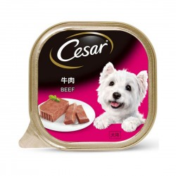 Cesar Dog Wet Food Beef 100g
