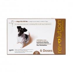 Revolution Parasiticide for Dog 3 Doses 5.1-10kg