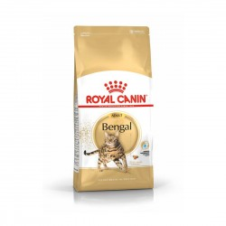 Royal Canin Cat Food Bengal 2kg