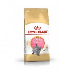 Royal Canin Cat Food British Shorthair Kitten 400g